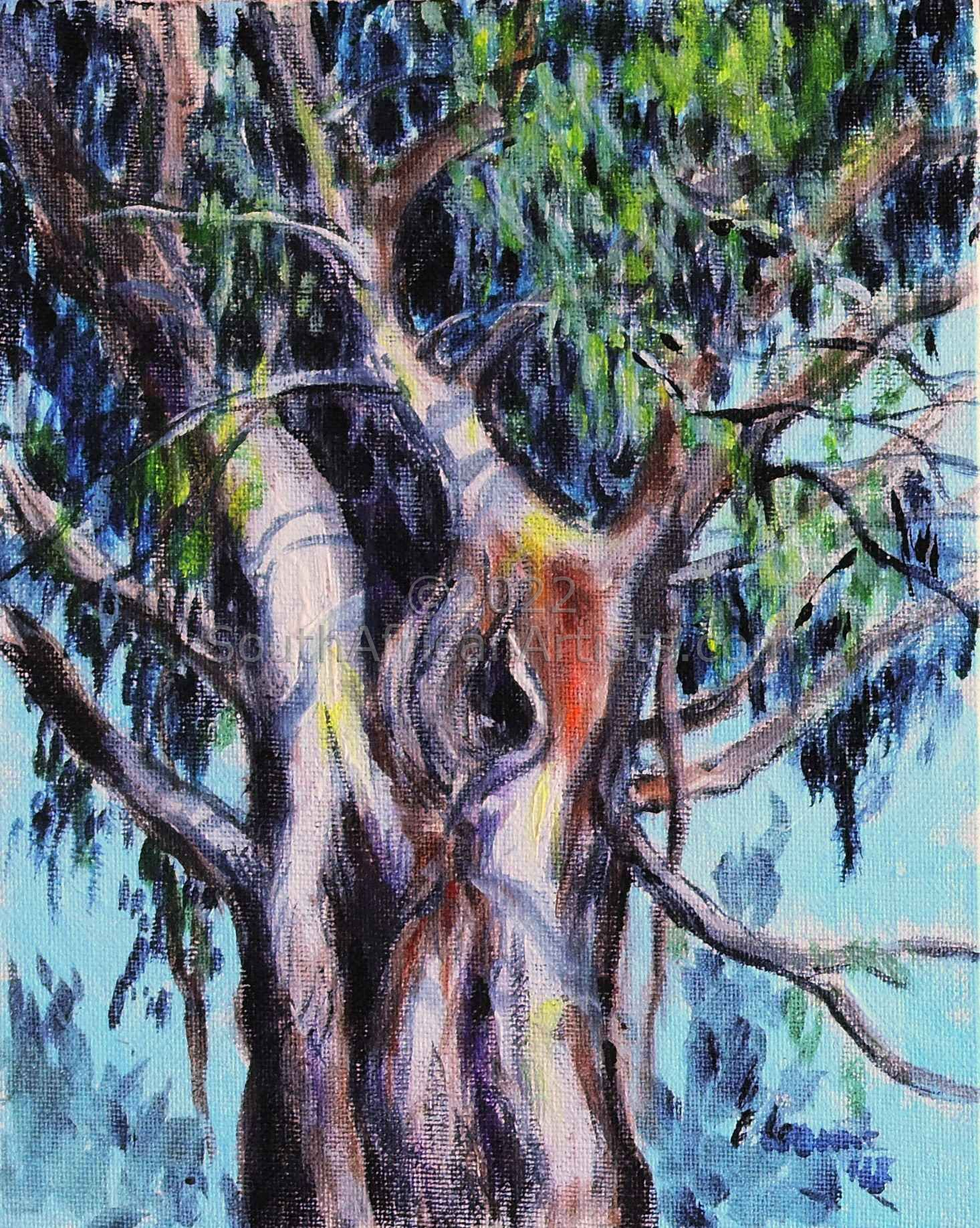 """Ancient Bluegum"""