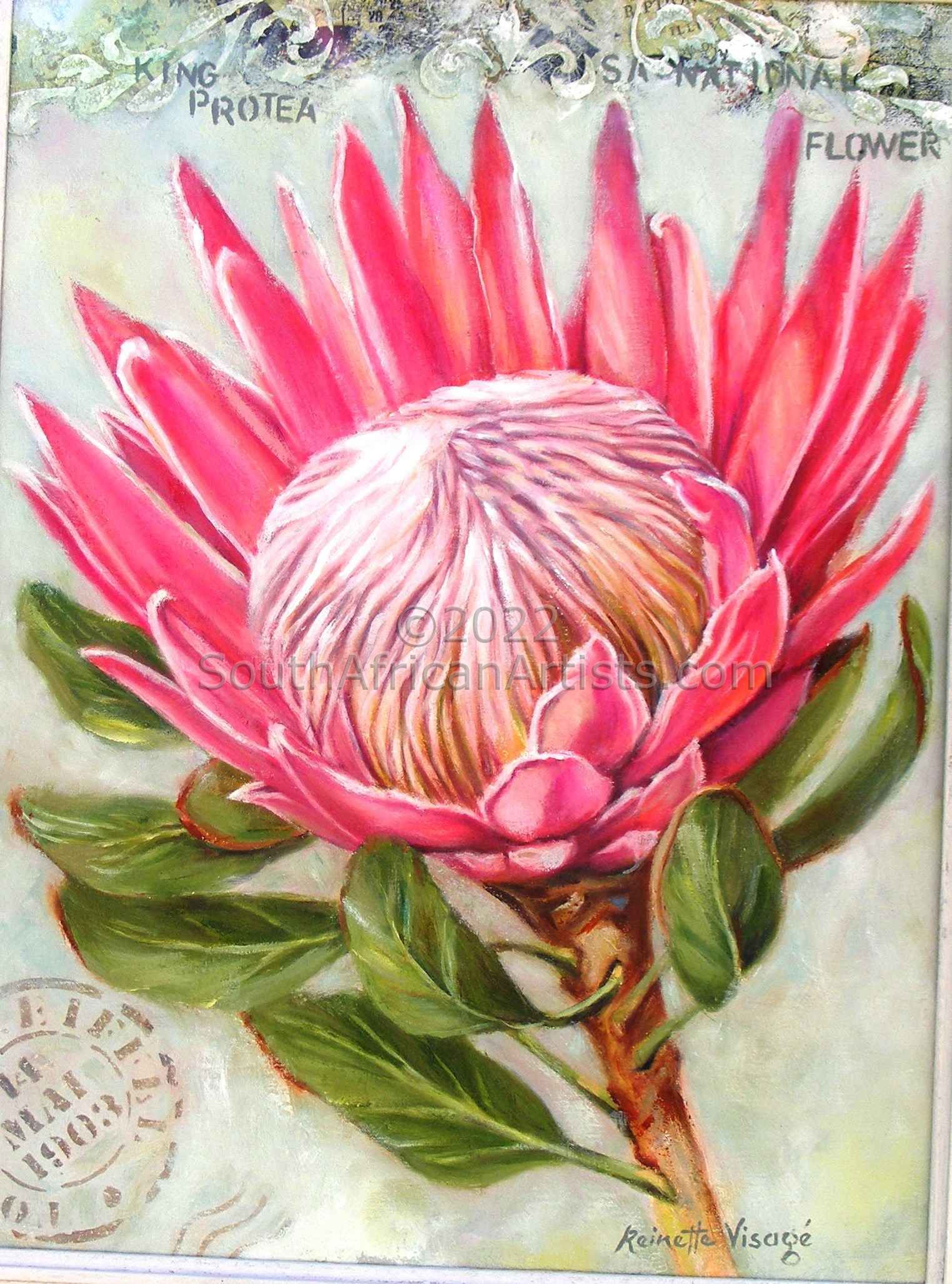 """Pink King Protea,with Detail in Background V"""