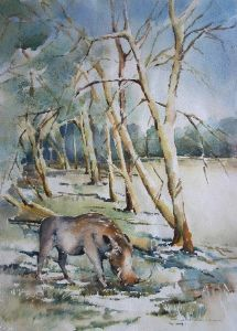 """Warthog and Fever Trees"""