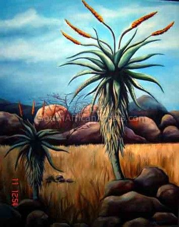 """Aloes"""