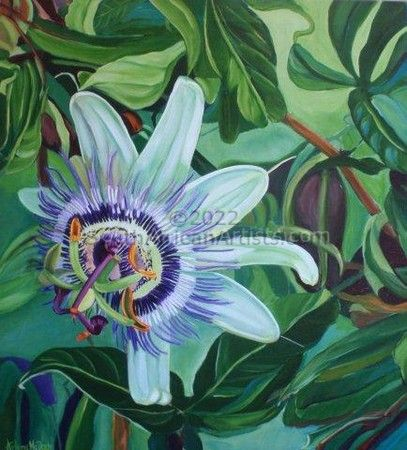 """Passion Flower"""