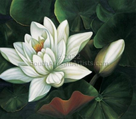 """Waterlily 1-print only"""
