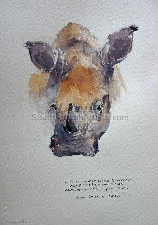 """Illustration Young White Rhino"""