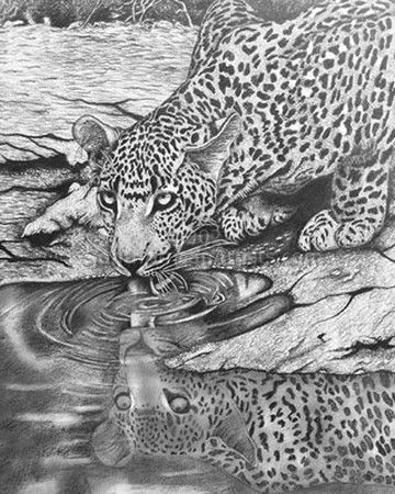 """At the Waterhole"""