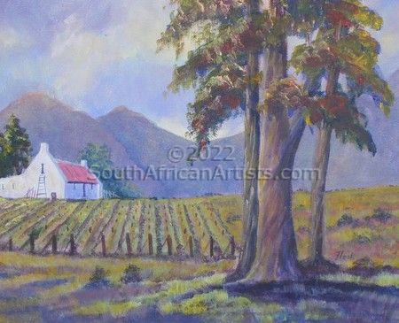 """Cape Vineyard"""