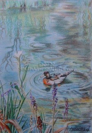 """Duck on a pond"""