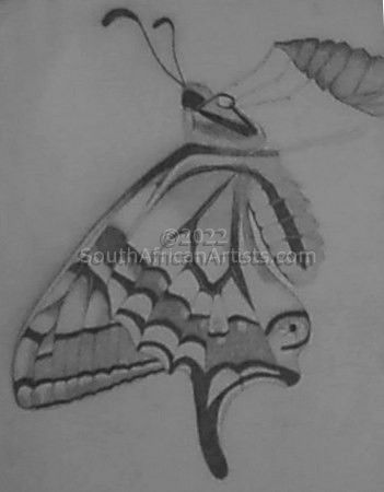 """Butterfly With Spider"""