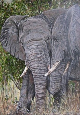 """Elephant Greeting"""