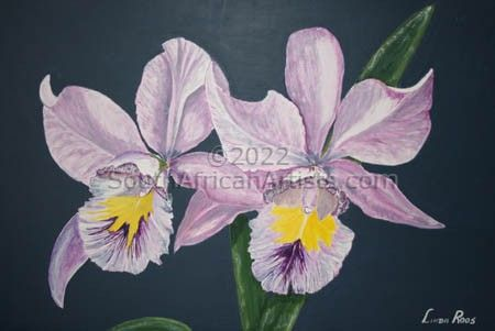 """Purple Orchids"""