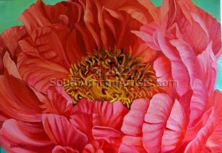 """Coral Peony"""