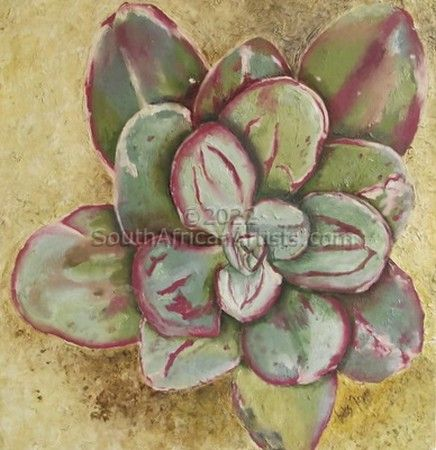 """Succulent With Maroon & Green"""