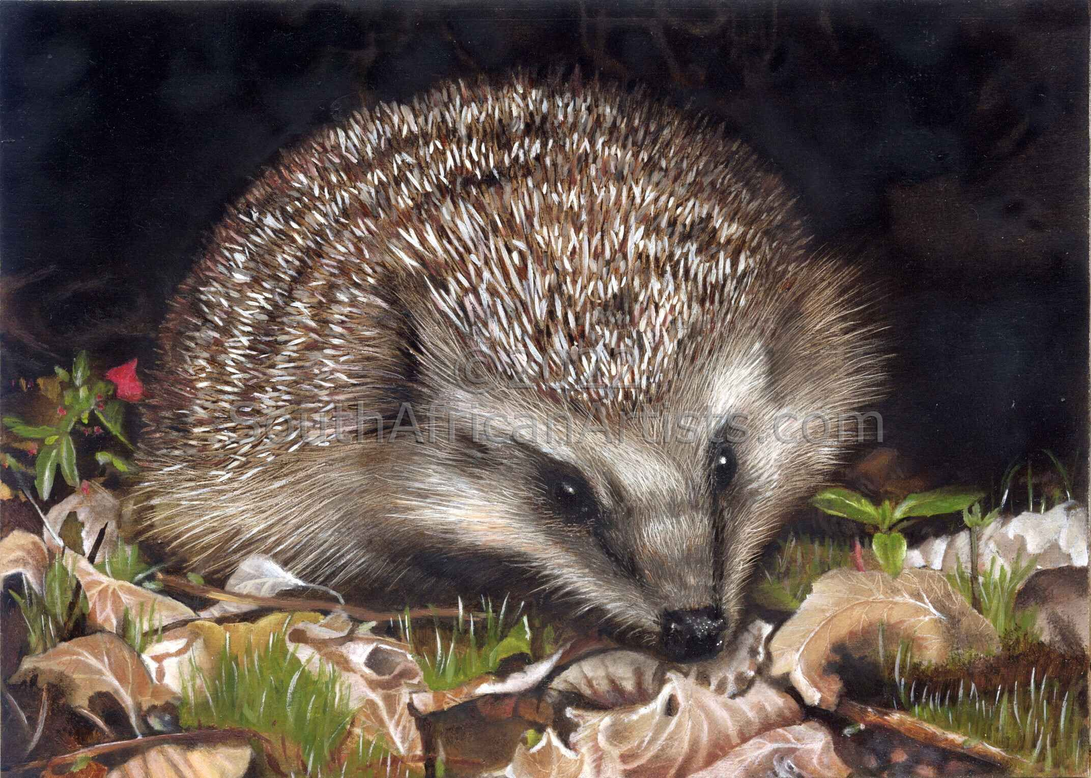"""Portrait in the Wild Hedgehog"""
