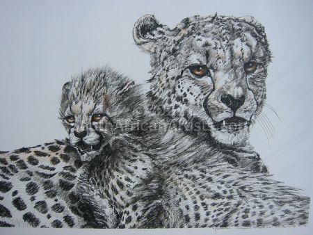 """Protection – Cheetah Mother and Cub"""