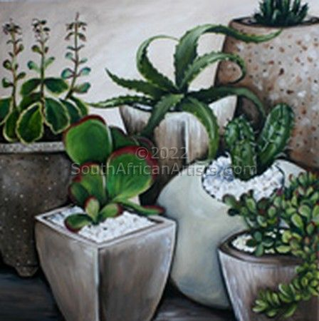 """Pots of Cactuses"""