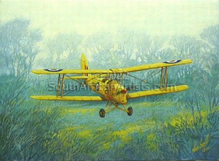 """DeHavilland D.H.82A Tiger Moth - Staying Low"""