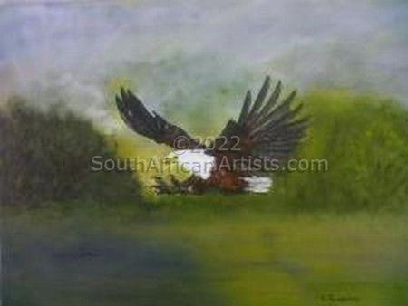 """African Fish Eagle Catching Fish"""