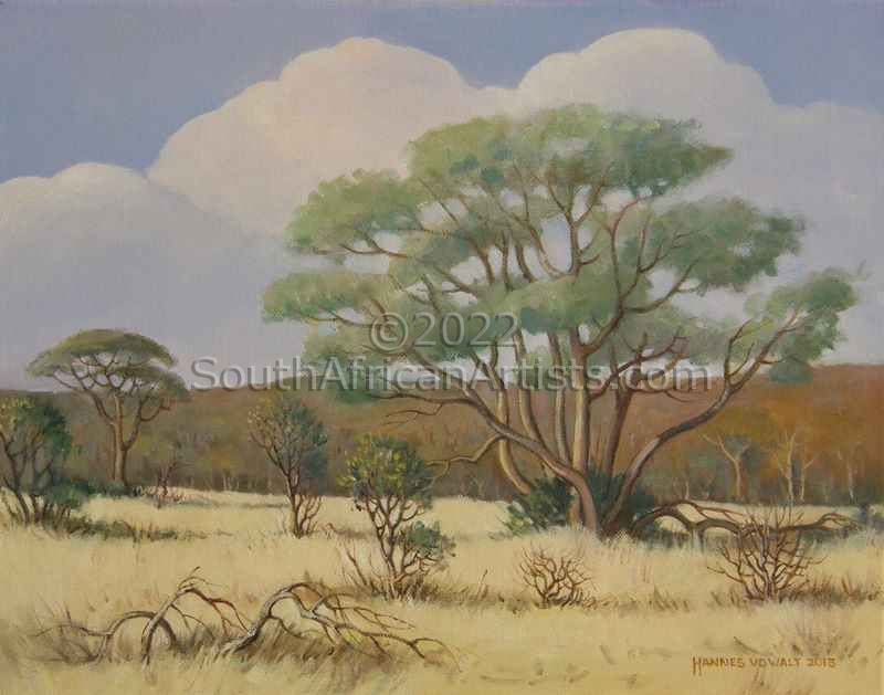 """Lowveld Scene with Bushwillow"""