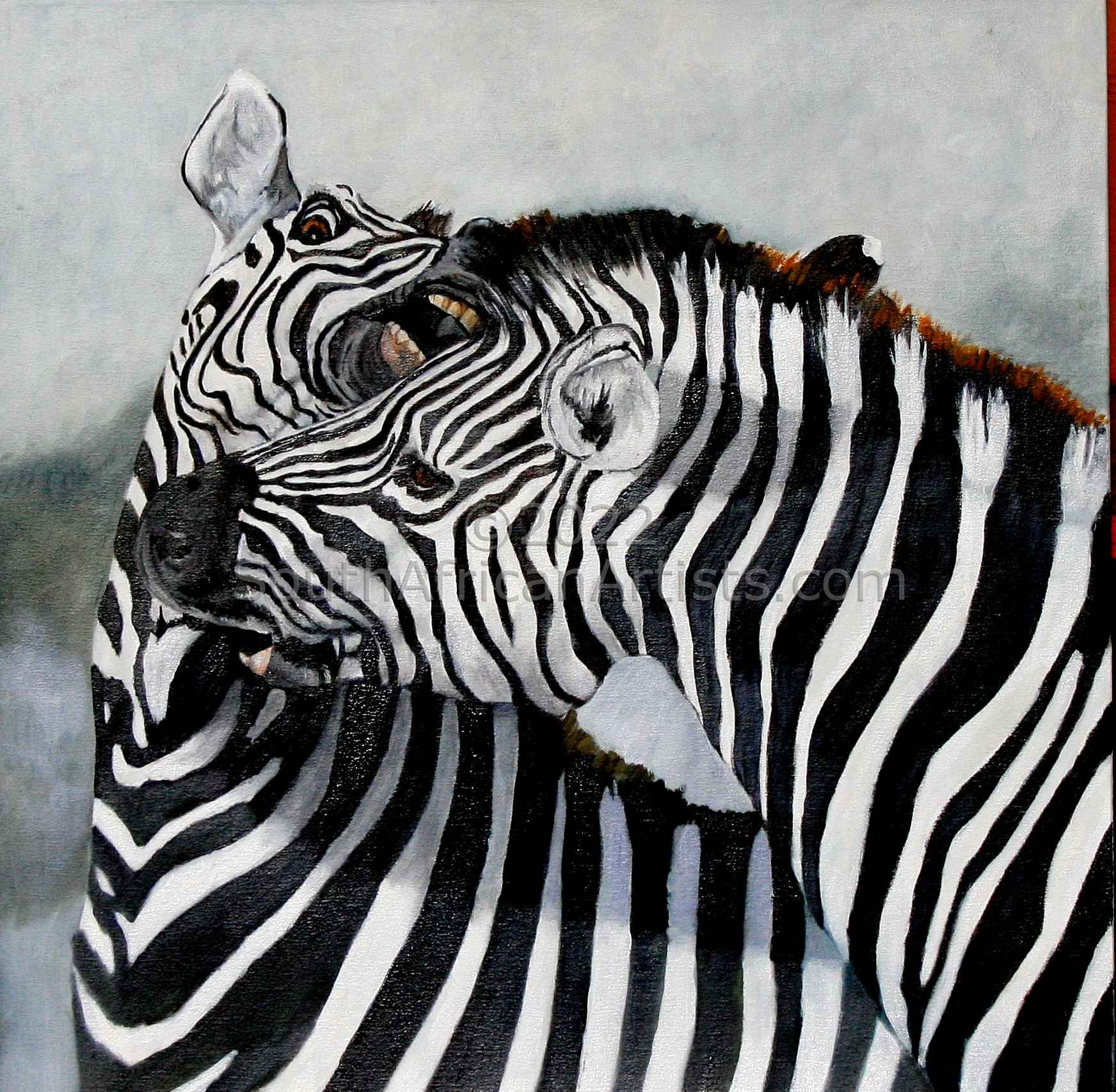 """Fighting Zebras"""