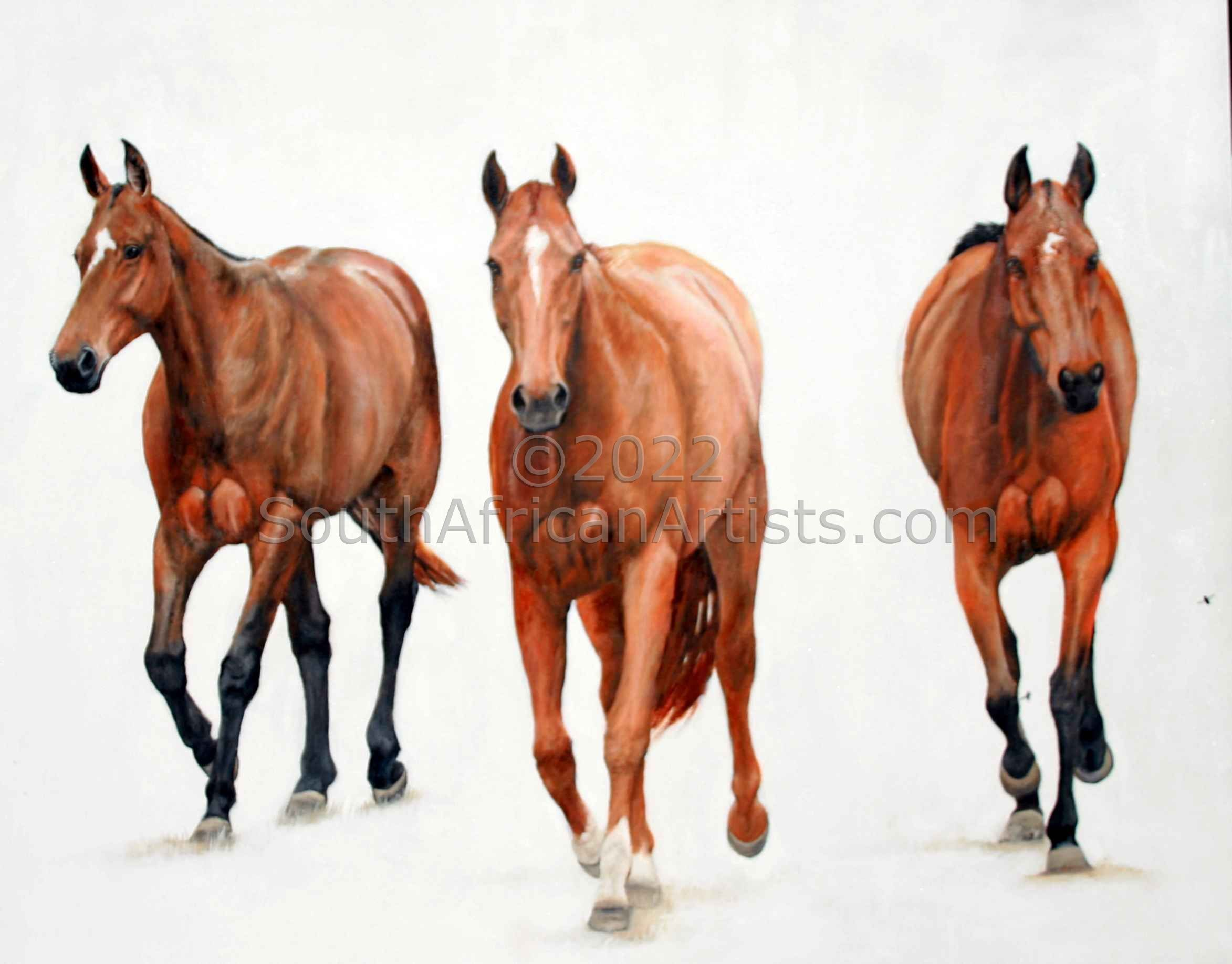 """3 Polo Ponies"""
