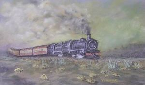 """Steam Train in the Karoo"""